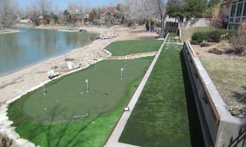 Backyard putting green grass in St. Louis